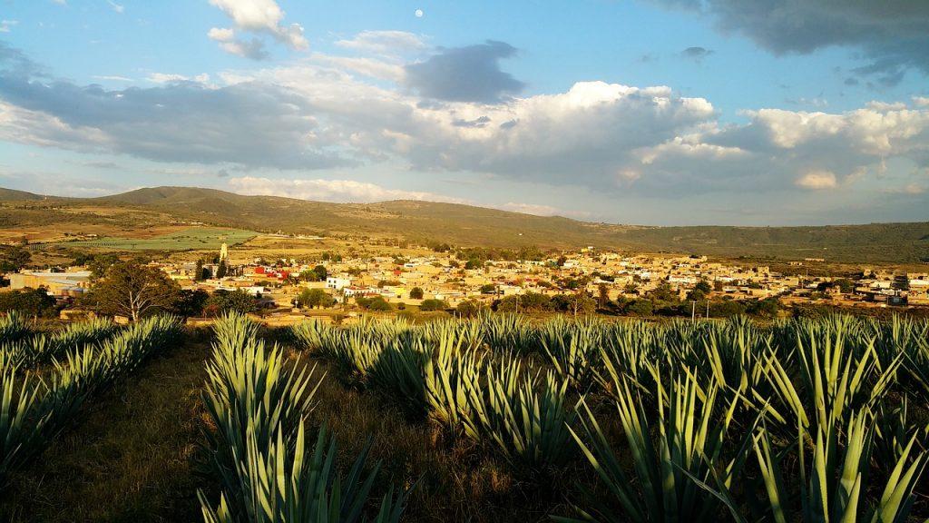 Pueblos Mágicos Tequila
