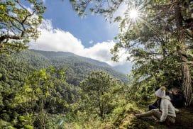 Turismo Ecológico Comunitario Capulalpam Mágico